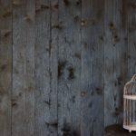 Charred wood - Dark Burnt