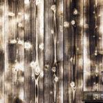Charred wood- Light Burnt I
